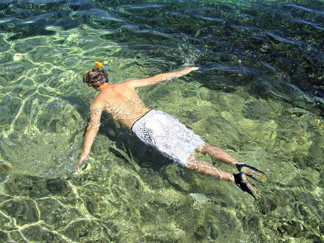 Enjoy snorkelling or diving on the Island of Korcula, Croatia