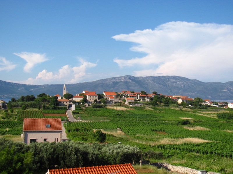 Cycling & Wine Tasting Tour in Lumbarda, Korcula Island
