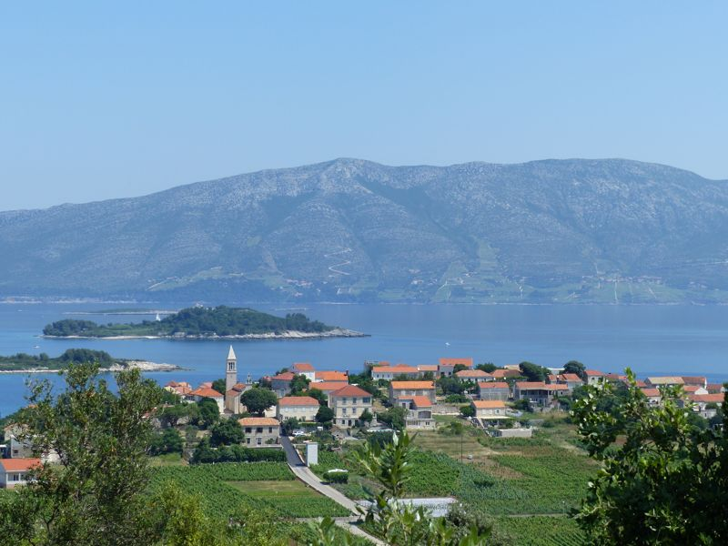 Panoramic & Viewspoints on Korcula Island - Lumbarda vineyards
