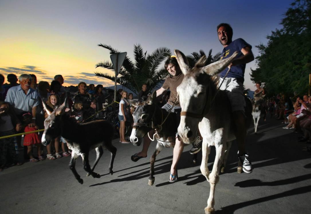 2019 events to enjoy on Korcula Island  - Donkey Racing in Lumbarda